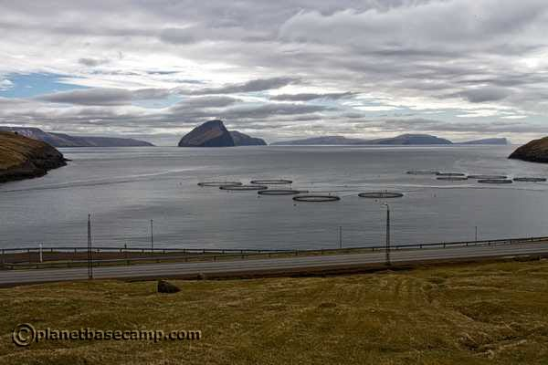 Salmon Farming - Faroe Islands - Koltur Island